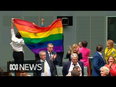 The moment Parliament said yes to same-sex marriage