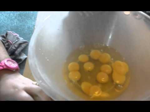 Egg box containing 29 double-yolk eggs
