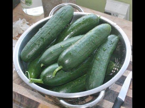 Hoop House & Summer Garden Plus How to Pickle Cucumbers