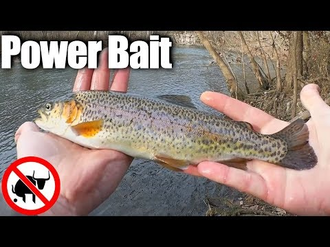 Trout Fishing With Power Bait - An Easy Way to Catch Rainbow Trout