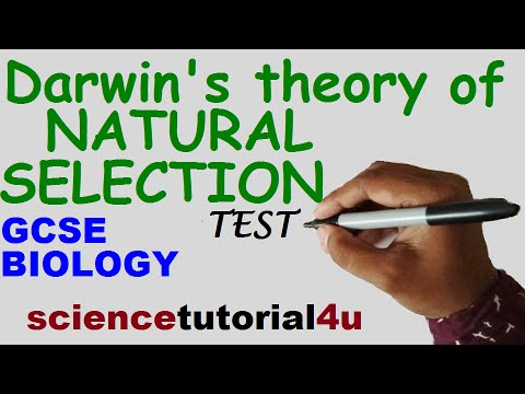 Natural Selection. TEST and GCSE Science Revision