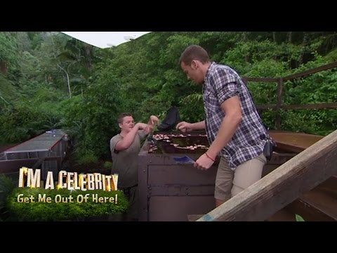 Preview Of The Pipes Of Peril  | I'm A Celebrity...Get Me Out Of Here!