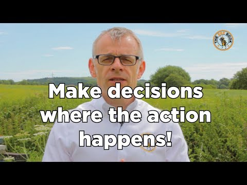 The Bee Book - Make decisions where the action happens!