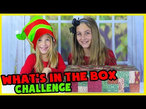 WHAT'S IN A BOX CHALLENGE! CHRISTMAS EDITION