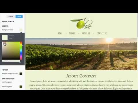How to change a Background Color, Font Style&Size, Button Colors in anaZana responsive website