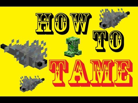 Minecraft - How To Tame a Silverfish!