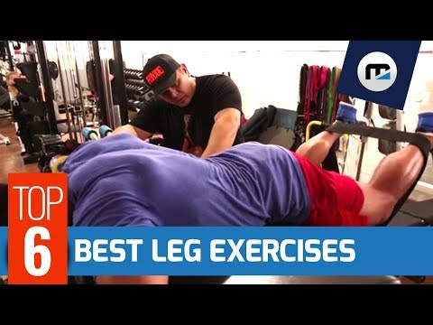 🔥TOP 6 Exercises for LEGS, HAMSTRINGS & GLUTES | Leg Day Workout w/ MorelliFit ♿