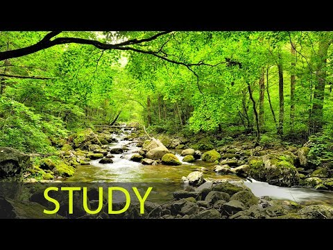 3 Hour Super Learning Music: Study Music, Relaxing Music, Meditation Music, Relaxation Music ☯1770