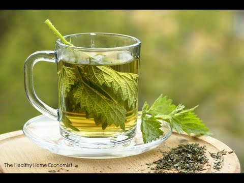 This amazing Remarkable Various Health Benefits Of Nettle Leaf