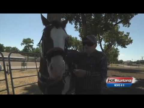 Man Gets Last Wish to Ride a Horse