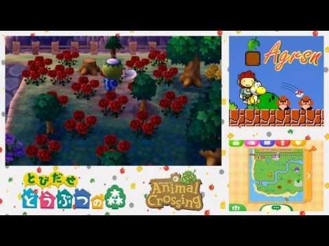 AC: New Leaf w/ Agrsn Day23p2: Black Rose Garden