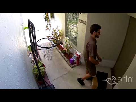 Caught on Arlo: Delivery Drop-Off