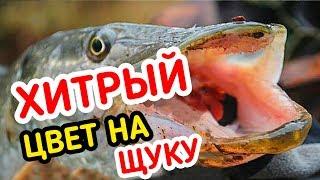 Рыбалка на ДЕШЁВЫЙ силикон и СВИНЕЦ Фанатик!!! Рабочий монтаж на Щуку!!!