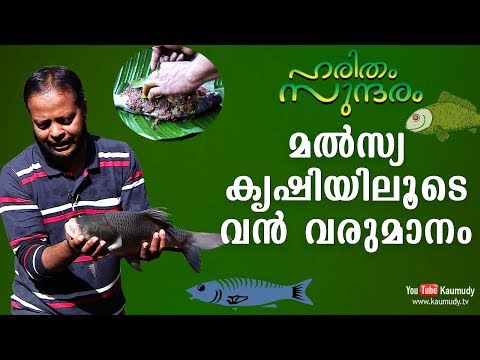 You can make profit out of Fish farming | Haritham Sundaram EP 154 | Kaumudy TV