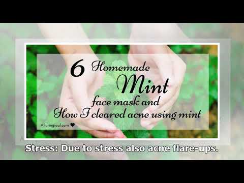 6 Homemade Mint Face Pack And My Experience With Mint On Skin