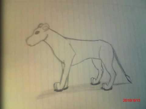 My Drawings 2010