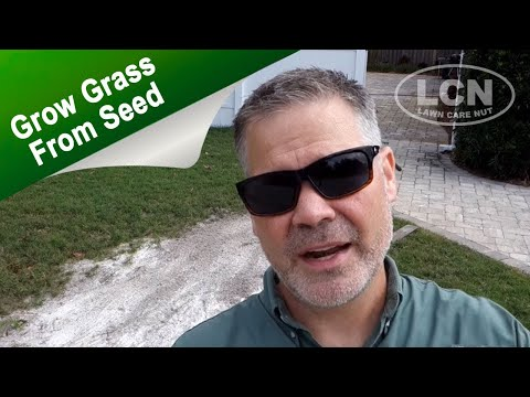 How To Grow Grass From Seed - Lawn Bare Spot Repair
