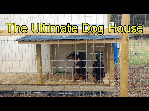 The Ultimate Dog House