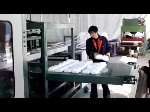 PS GPPS Foam food box machine/PS food container machinery manufacture