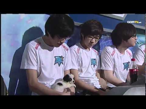 Tastosis on Byun's Puppy