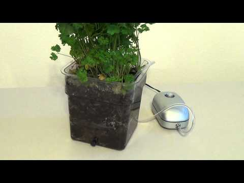 Best way to grow in soil with Air Injection technology for soil demonstration