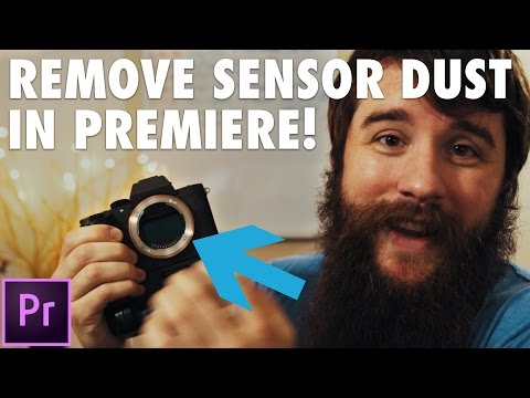 How to EASILY remove dust spots from your videos in Premiere Pro & After Effects