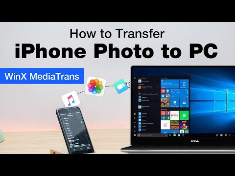 iPhone X/8/7 How-to: Transfer iPhone Photo to PC [without iTunes on Windows]
