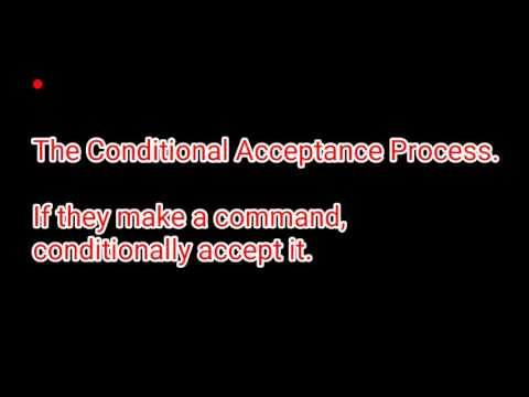Article 61 / Lawful Excuse / The Conditional Acceptance Process.