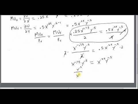 Utility Maximization with a Cobb-Douglas Utility Function
