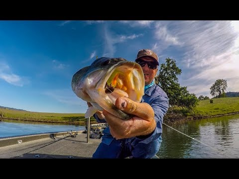 How To Sight Fish When Its NOT EASY!