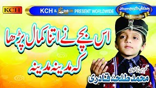Naat Sharif   || Beautiful Voice Of Talha Qadri