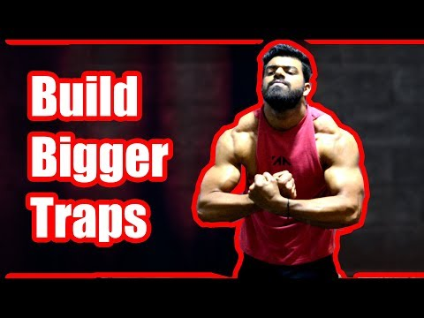 Build Bigger Traps | 3 Easy Exercises