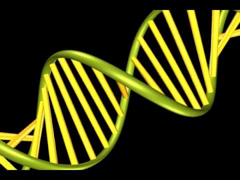 3d Animation Double Helix DNA Strain
