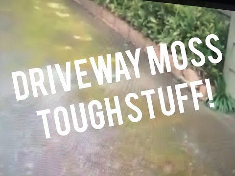Driveway Moss Removal Control Cleaner, Spray & Forget 3-1 mix