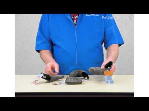 PetSolutions: Aussie Naturals Water Buffalo Horn
