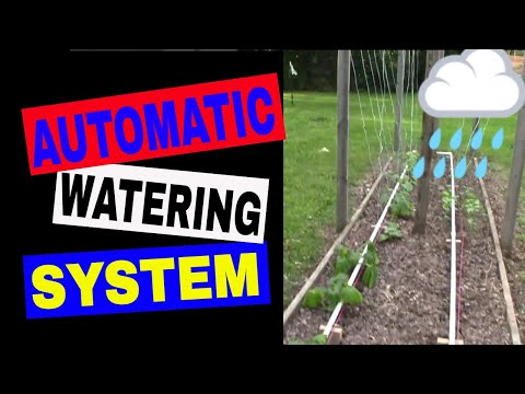 Mittleider Gardening System - Installing Automated Watering System