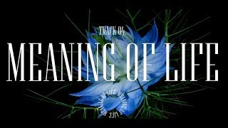 Kelly Clarkson - Meaning of Life [Album Trailer]
