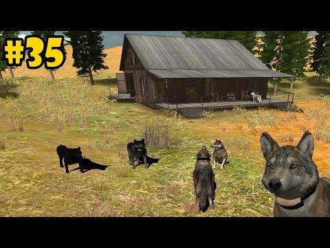 Wolf Quest Multiplayer - Lost River -Hunting With Friends- Android/iOS/Kindle - Gameplay Episode 35