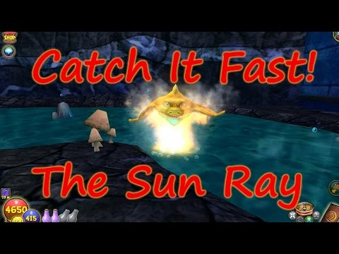 Wizard101: Fishing  - Catch It Fast - Sun Ray