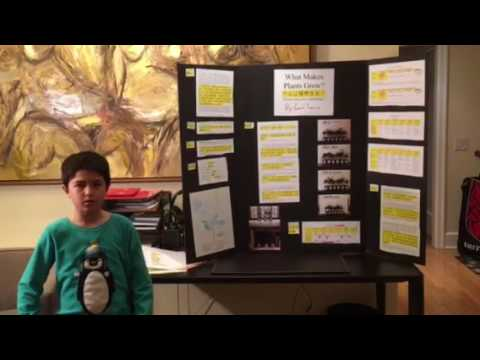 Cam's Science Fair Project