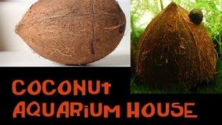 How to Make A Coconut House For The Aquarium 2.0