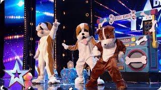 PARTY PLAYLIST! | Britain's Got Talent 2019