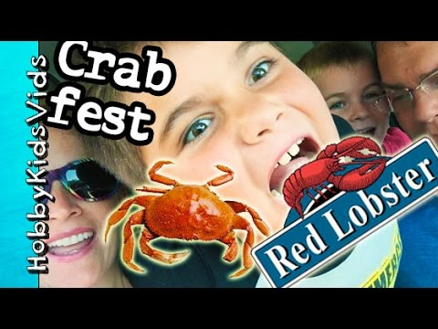 Red Lobster Dinner! How to Eat Crab + Seafood Review Restaurant HobbyKidsVids