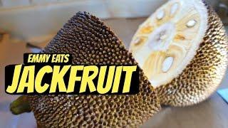 Tasting Jackfruit How To Open It