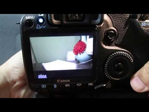 Download 50D Magic Lantern Guide + Quick HD Video Test