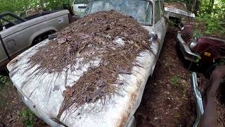 We Found An Abandoned Junkyard Filled With Forgotten Classic Cars!