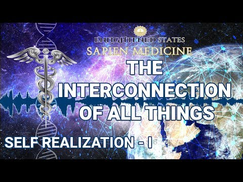The Interconnection Of Everything (Self Realization Series Pt 1.)