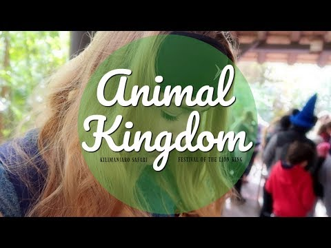 A REALLY Bumpy Ride | Animal Kingdom | Ever After Take Three