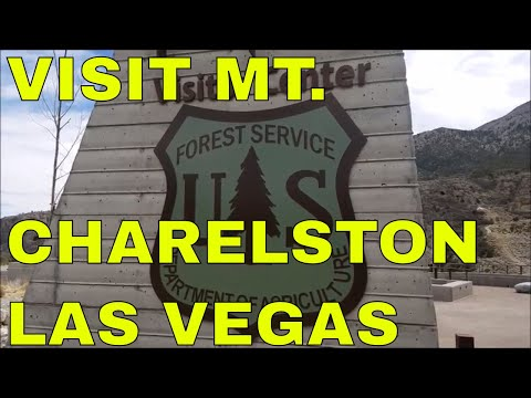 VISIT MT. CHARLESTON WHEN YOU VISIT LAS VEGAS AND TRY DISPERSED CAMPING