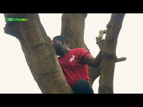 Naijas Craziest Comedy - Still Hiding On Top A Tree To Avoid Arrest Cover